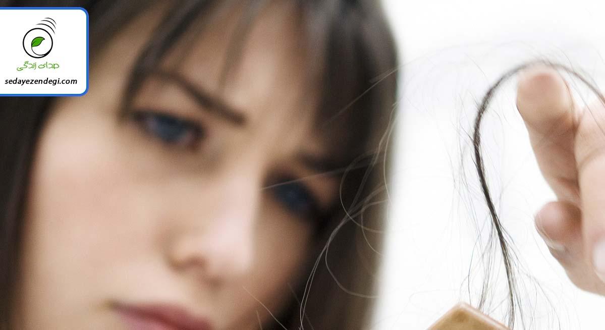خیلیها بیشتر وقت خود را در آرایشگاهها میگذرانند به امید اینکه موهایشان شاداب باشد و برق بزند. خیلیها هم هزینههای زیادی را صرف خرید انواع شامپوها، رنگ مو، سرم مو و غیره میکنند تا موهایشان زیباتر باشد. اما باید بدانید که قبل از هر کاری باید به فکر تغذیهی موهایتان باشید آن هم با مصرف مواد غذایی مناسب برای موها. پوست سر به مواد مغذی متعددی نیاز دارد تا موها خوب رشد کنند و سالم بمانند. در برخی موارد ریزش مو به دلیل کمبود مواد مغذی رخ میدهد. در این مطلب چند مادهی غذایی معرفی میکنیم که باعث تقویت ریشهی موهایتان شده و سلامت و شادابی آنها را تضمین میکند. ۱ حبوبات حبوبات از جمله لوبیا و عدس بخش مهمی از موادی هستند که برای رشد و سلامت موها لازم هستند. این مواد نه تنها سرشار از پروتئیناند (که لازمه رشد موهاست) بلکه دارای آهن، روی و بیوتین هستند. کمبود ماده بیوتین باعث شکنندهشدن موها میشود. ۲ خشکبار خشکبارها از جمله آجیل ها مانند گردو و بادام و پسته می تواند روی سلامت موها تاثیر داشته باشد. افرادی که موهایی نرم و شکننده دارند، میتوانند خشکبار بیشتری مصرف کنند. اگر تارهای موهایتان نازک است، میتوانید برای ضخیمتر شدن و درخشندگی آن ها از خشکبار استفاده کنید. • خشکبار سرشار از ماده سلنیوم (ماده معدنی مهم برای سلامت پوست سر) است و موجب سلامت موها میشود. مغزها همچنین منبع روی هستند و کمبود روی در بدن باعث ریزش موها میشود. ۳ گوشت سفید گوشت مرغ و انواع ماکیان حاوی پروتئین است. کمبود پروتئین در بدن یا مصرف پروتئینهایی که کیفیت خوبی ندارند، باعث شکنندگی و ضعف ساختمانی موها و حتی تیرهشدن آن میشود. گوشت مرغ همچنین سرشار از آهن است و همانطور که گفتیم، آهن برای تقویت موها لازم است. ۴ تخم مرغ تخممرغ منبع بسیار غنی از پروتئین است و به دلیل اینکه ماده بیوتین و ویتامین B12 هم دارد، یک ماده مغذی برای رشد موهاست. ۵ غلات سعی کنید برای صبحانه بیشتر از نان تهیهشده از گندم و جو مصرف کنید. غلات به دلیل اینکه دارای روی، آهن و ویتامینهای گروه B هستند، موهایتان را تقویت میکنند.