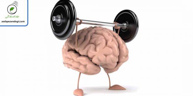 تقویت حافظه - چرا چیزها را فراموش می کنیم؟