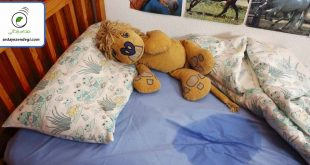 شب ادراری در کودکان و راه های درمان آن