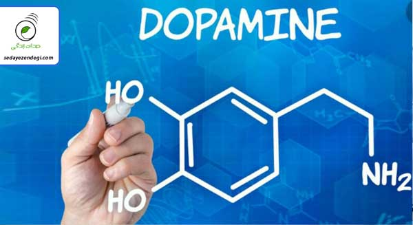 هورمون دوپامین (Domapine) چیست و چه تاثیری بر بدن دارد؟